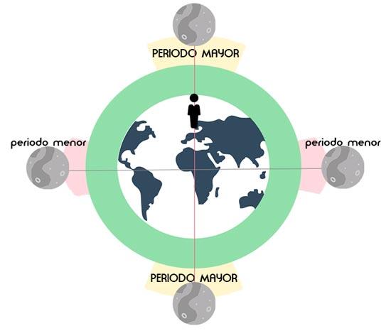 La teoría Solunar: Esquema de los principales periodos para la Pesca