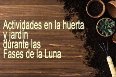 Calendario Lunar de la Huerta y Jardín