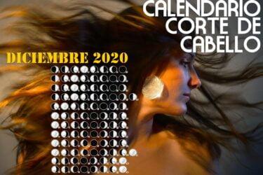 Calendario para el Corte de pelo diciembre de 2020