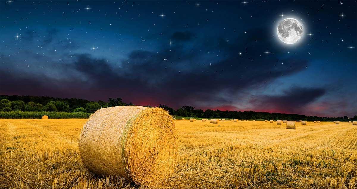 Tablas Solunares del mes de Septiembre de 2021. La luna de llena de septiembre es la luna de la Cosecha.