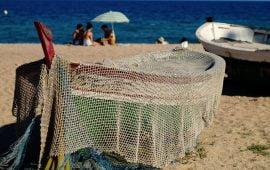 Motivo de Pesca.Tablas Solunares de Badalona
