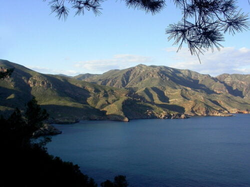 Motivo de Pesca.Tablas Solunares de Murcia