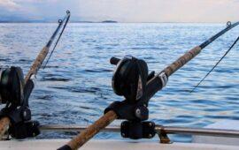 Los mejores momentos para pescar en Mallorca