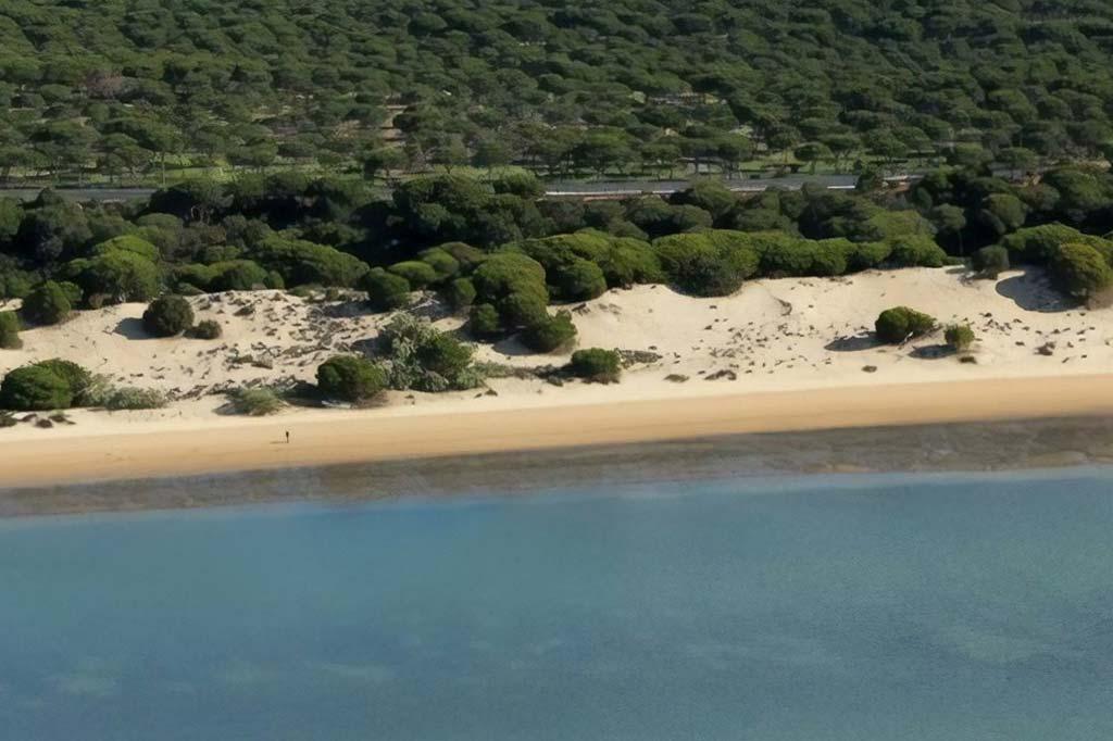 mareas de Playa San Miguel