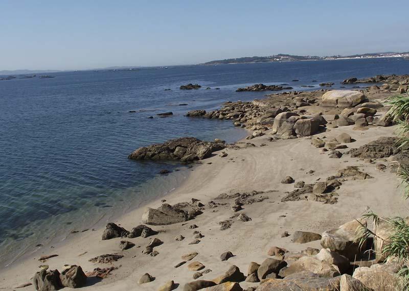 mareas de Playa de Escarabote