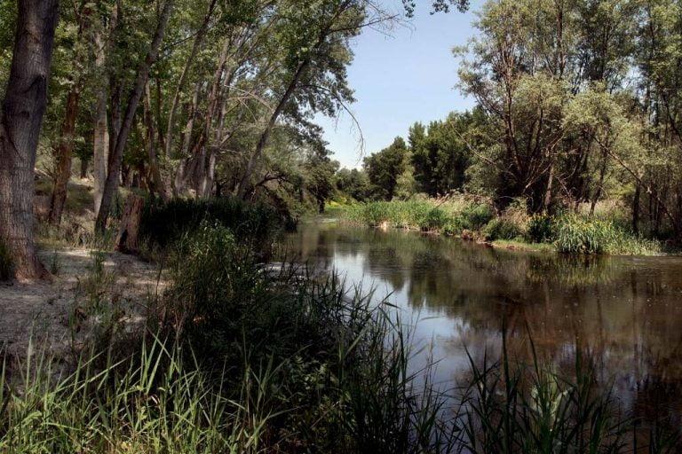 Motivo de Pesca Tablas Solunares de Azuqueca de Henares