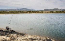 Motivo de Pesca Tablas Solunares de Cáceres