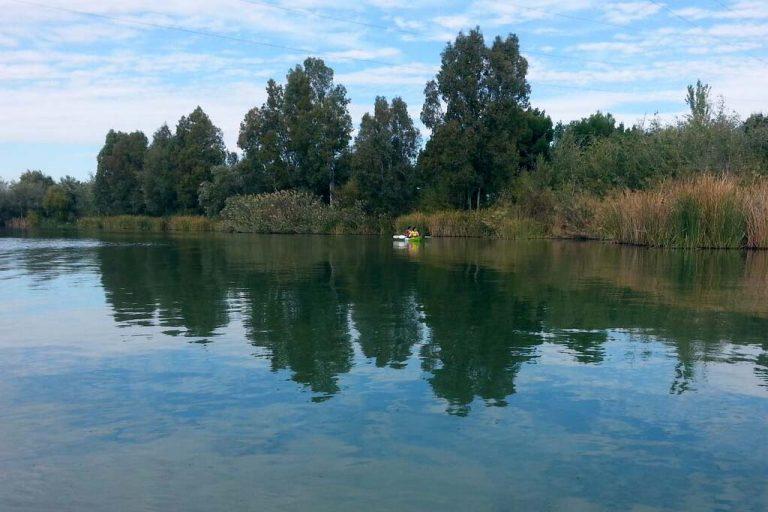 Motivo de Pesca Tablas Solunares de La Rinconada