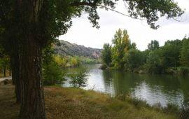 Motivo de Pesca.Tablas Solunares de Soria